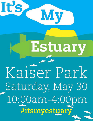 It's My Estuary Day