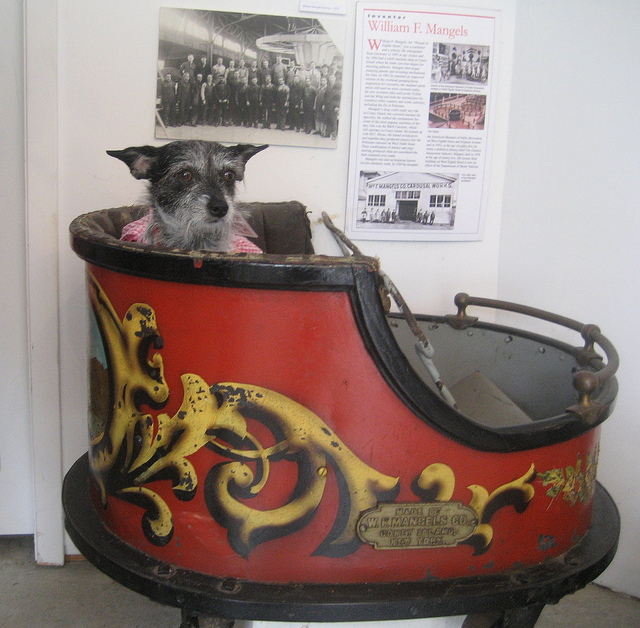 Mackie rides the Whip Car at Coney Island History Project